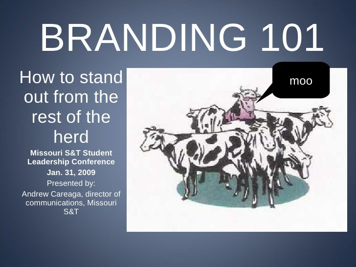 Branding 101 (for student organizations)