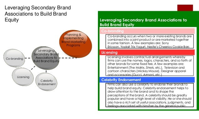 essay brand management
