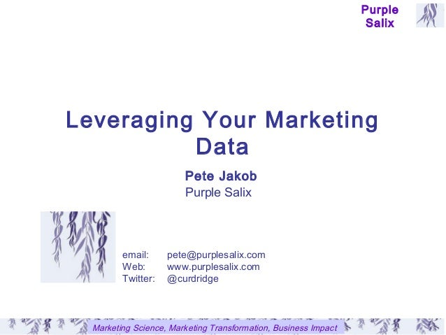 Leveraging your marketing data