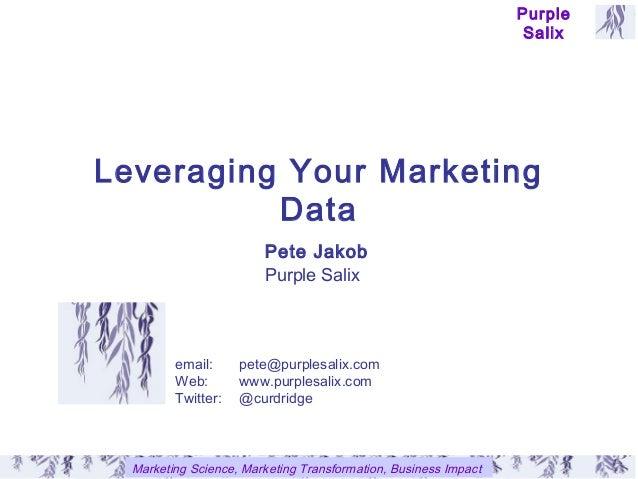 Leveraging your marketing data