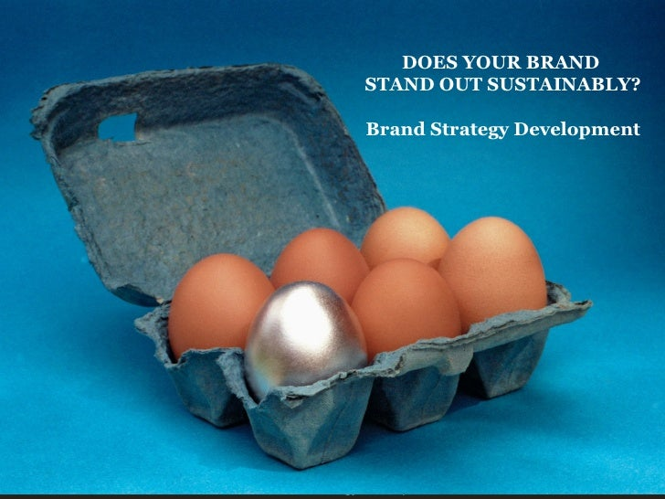 PLAN VAN AANPAK DOES YOUR BRAND  STAND OUT SUSTAINABLY? Brand Strategy Development