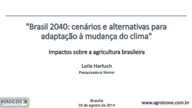 """""""Brasil 2040: cenários e alternativas para  adaptação à mudança do clima""""  Impactos sobre a agricultura brasileira  www.ag..."""