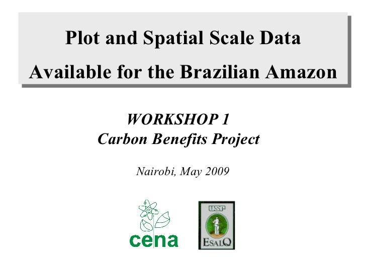 Plot and Spatial Scale  Data Available for the Brazilian Amazon WORKSHOP 1 Carbon Benefits Project Nairobi, May 2009