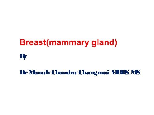 Breast(mammary gland) By DrManah Chandra Changmai MBBS MS