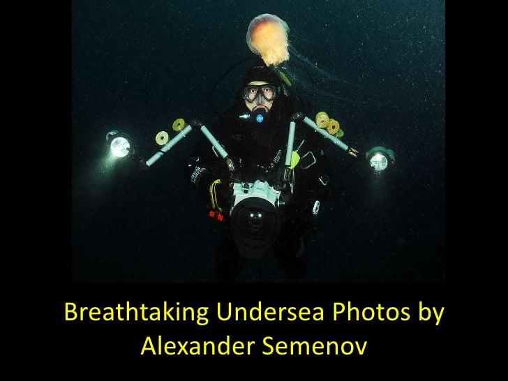 Breathtaking undersea photos by alexander semenov