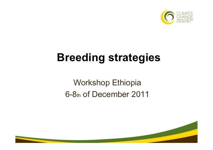 1 • 3/21/11              Breeding strategies                 Workshop Ethiopia               6-8th of December 2011