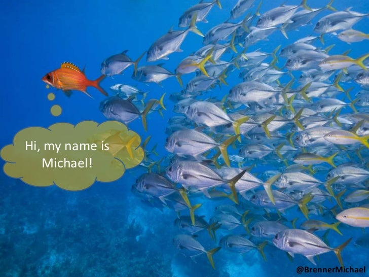 Hi, my name is   Michael!                 @BrennerMichael