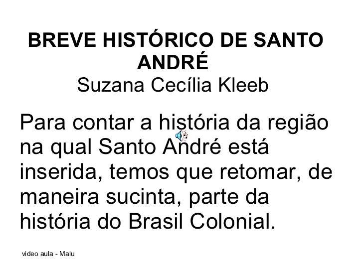 BREVE HISTÓRICO DE SANTO ANDRÉ  Suzana Cecília Kleeb  Para contar a história da região na qual Santo André está inserida, ...