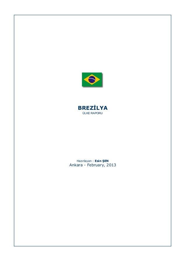Brezilya ulke raporu_2013