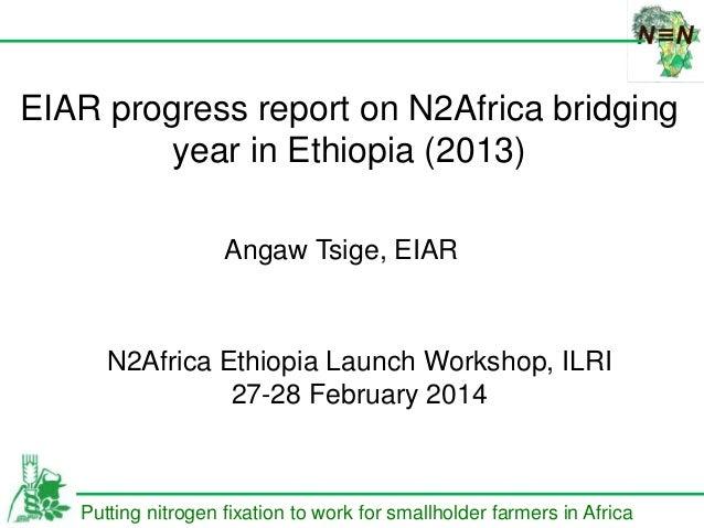 በሀዋሳ ዩኒቨርሰቲ የ ጋር በመ HAWASSA U DIRECTO EIAR progress report on N2Africa bridging year in Ethiopia (2013) Putting nitrogen f...