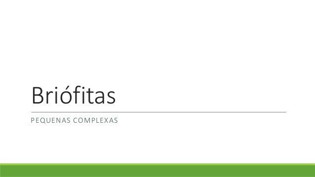 Briófitas  PEQUENAS COMPLEXAS