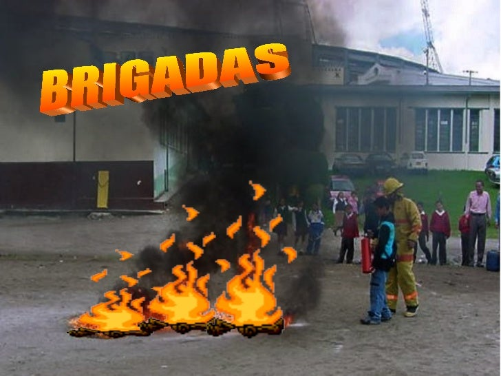 Brigadas