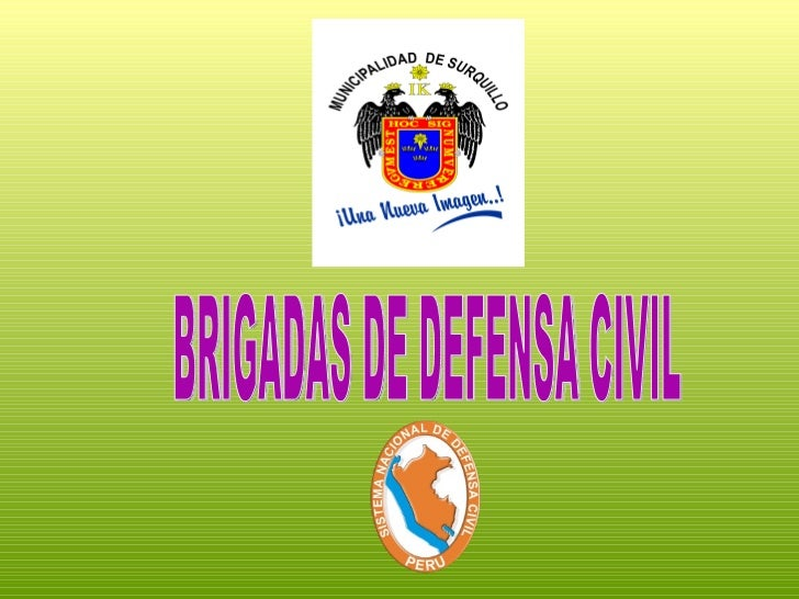Brigadas de defensa civil