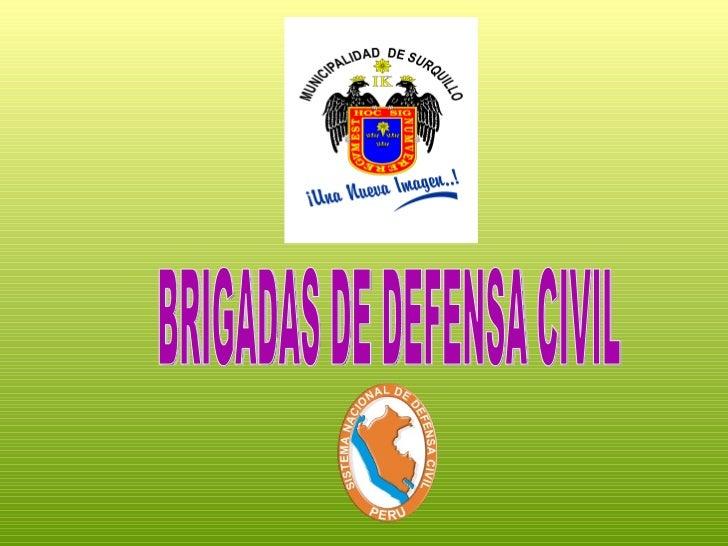 Brigadas de defensa civil