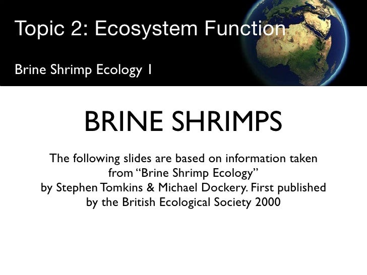 Topic 2: Ecosystem Function Brine Shrimp Ecology 1               BRINE SHRIMPS      The following slides are based on info...