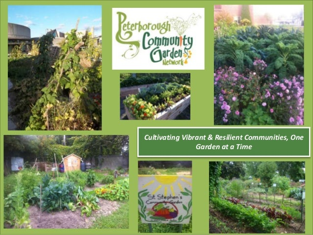 Cultivating Vibrant & Resilient Communities, One Garden at a Time