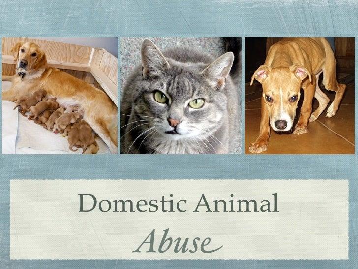 Domestic Animal     Abuse