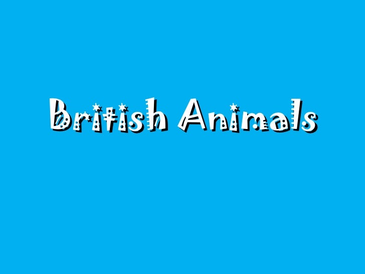 British Animals