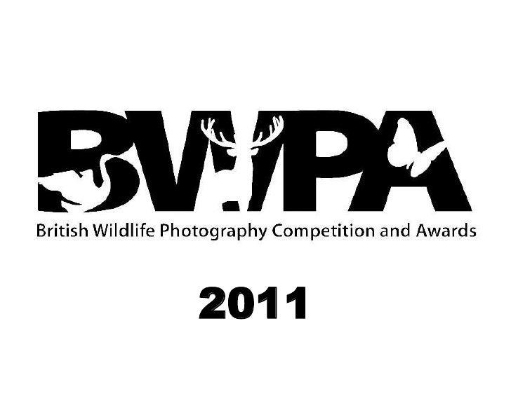 British Wildlife Photographer Awards 2011