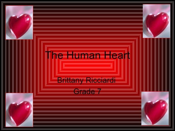 Brittanys human heart