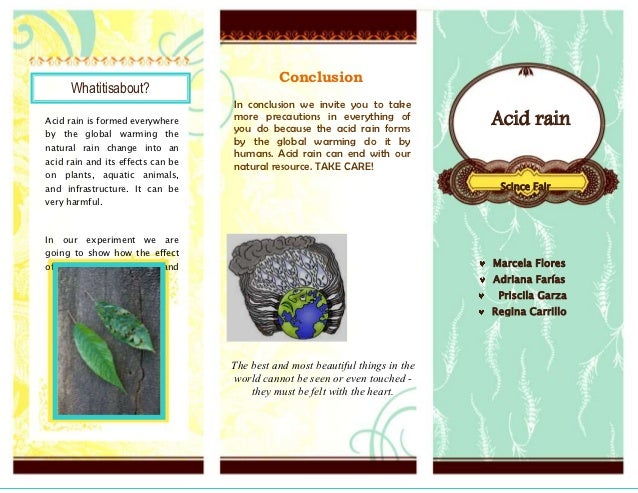 conclusion on acid rain