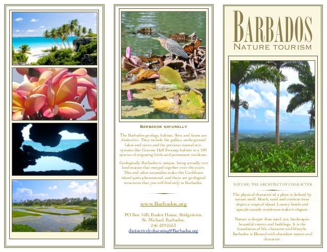 Barbados Nature Tourism Brochure