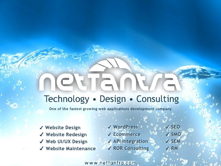 NetTantra Web Development Brochure