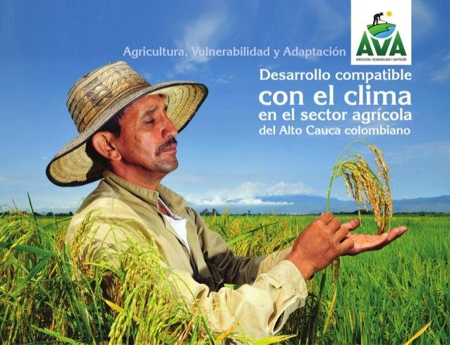 Desarrollo Compatible con el Clima en la Alta Cuenca del Rio Cauca