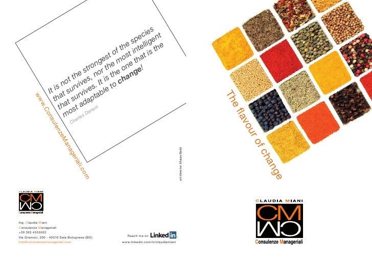 Brochure CM Consulenze Manageriali - english