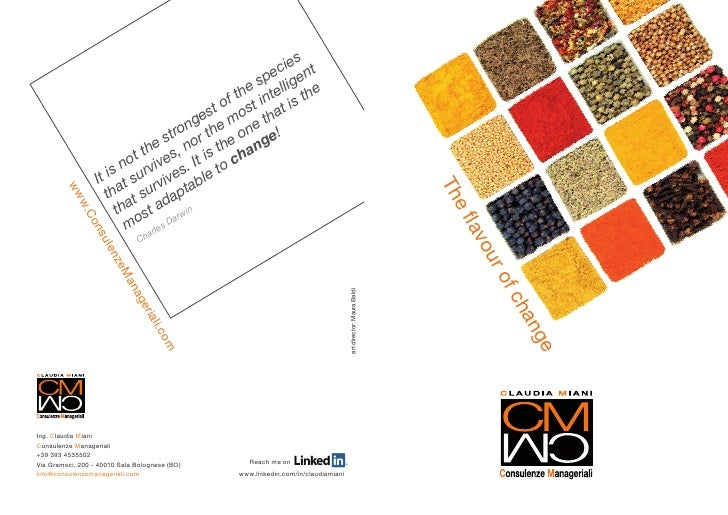 Brochure CM Consulenze Manageriali Eng