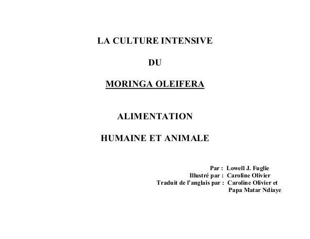 LA CULTURE INTENSIVE  DU  MORINGA OLEIFERA  ALIMENTATION  HUMAINE ET ANIMALE  Par : Lowell J. Fuglie  Illustré par : Carol...