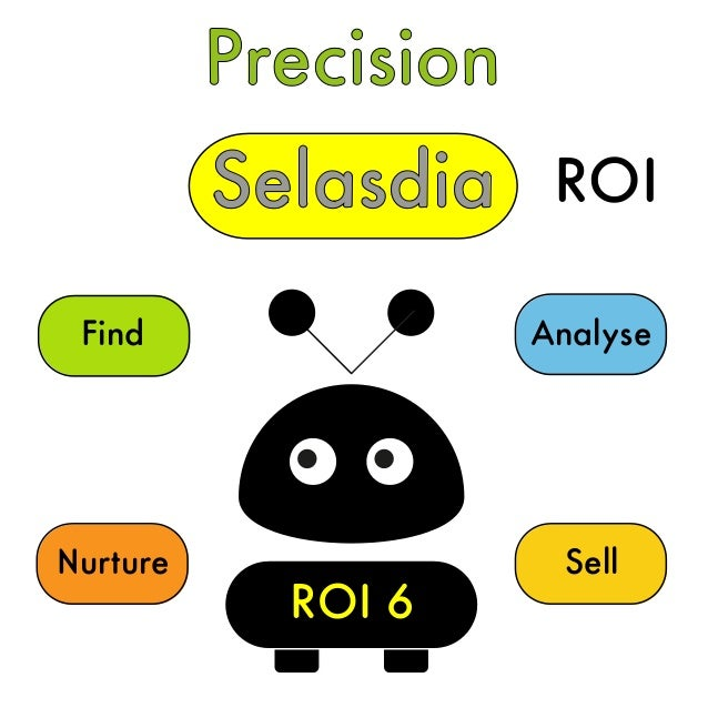 Precision Selasdia Find Nurture Sell Analyse ROI 6 ROI