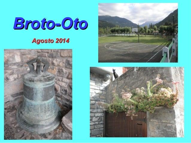 Broto-OtoBroto-Oto Agosto 2014Agosto 2014