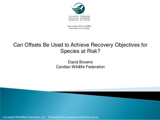 Can Offsets Be Used to Achieve Recovery Objectives for Species at Risk?