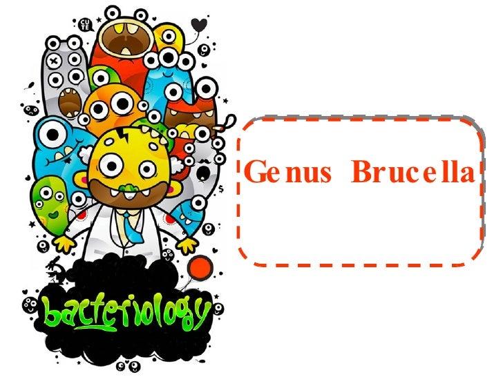 Genus Brucella