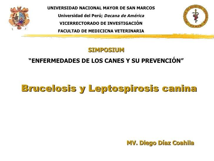 Brucelosis y Leptospirosis canina MV. Diego Díaz Coahila UNIVERSIDAD NACIONAL MAYOR DE SAN MARCOS Universidad del Perú;  D...