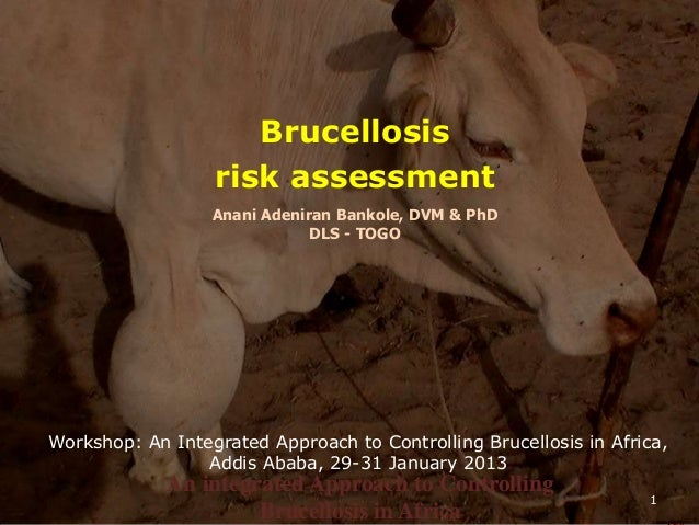 An integrated Approach to Controlling Brucellosis in Africa - Addis Ababa, 29-31 Jan 2013Dr BankoléAn integrated Approach ...