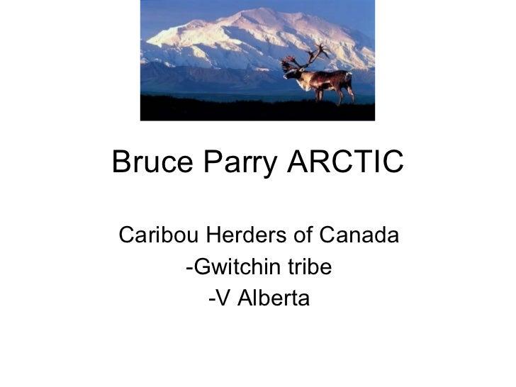 Bruce parry arctic