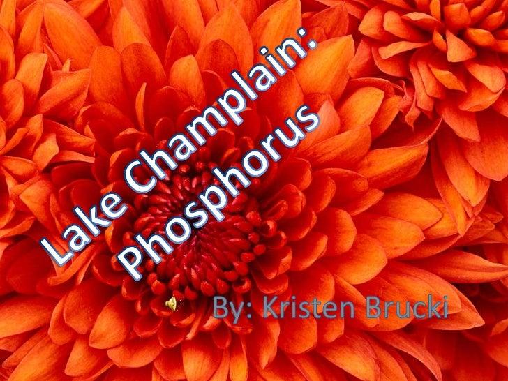 Lake Champlain:<br />Phosphorus<br />By: Kristen Brucki<br />
