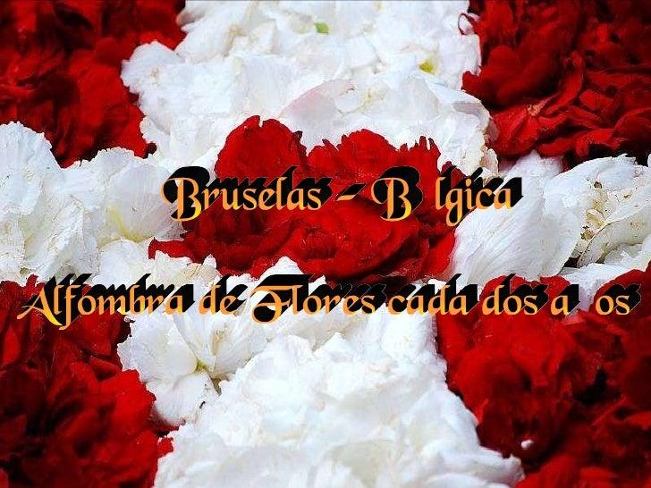 Bruselas - Bélgica Alfombra de Flores cada dos años