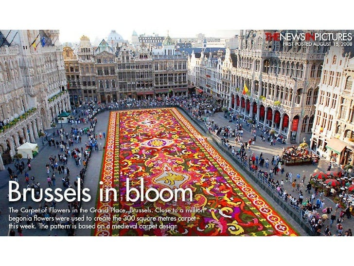 Brussels In  Bloom