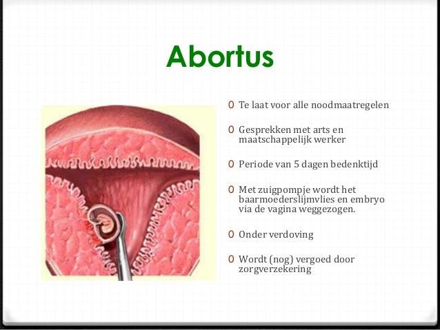 wanneer zwanger