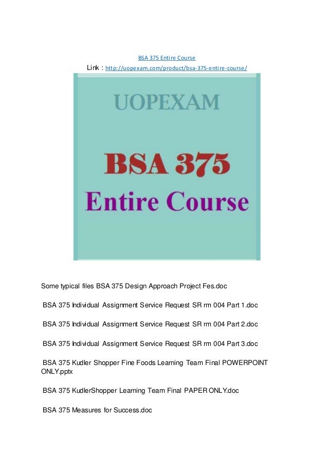 bsa 375 documentation plan summary