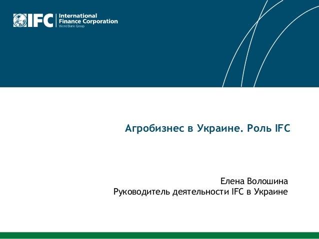 BSEF 2013 agriculture Elena Voloshina