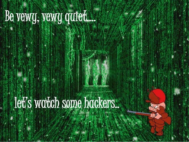 Be vewy, vewy quiet….let's watch some hackers..