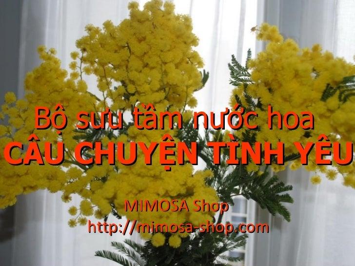 Bộ sưu tập nước hoa mimosa