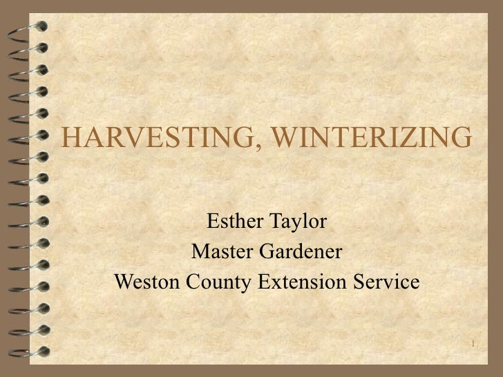 HARVESTING, WINTERIZING Esther Taylor Master Gardener Weston County Extension Service