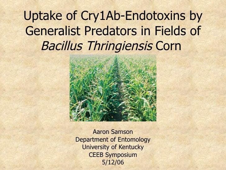 Uptake of Cry1Ab-Endotoxins by Generalist Predators in Fields of   Bacillus Thringiensis Corn                    Aaron Sam...