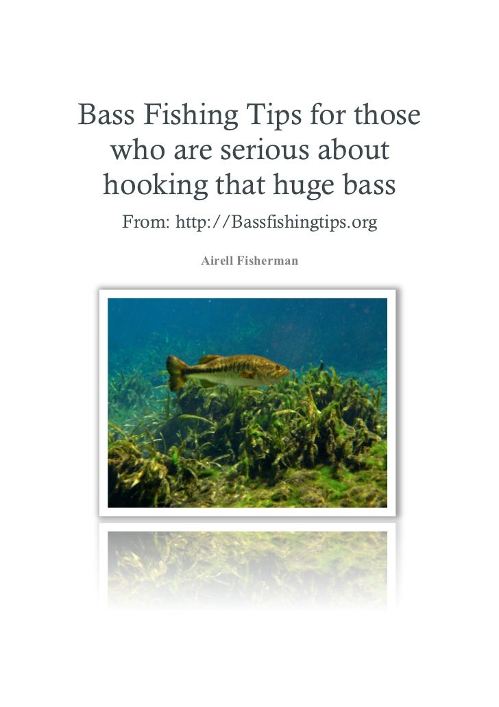 Bass Fishing Tips - Essentials for newbies