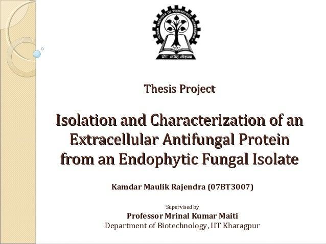 thesis on endophytes